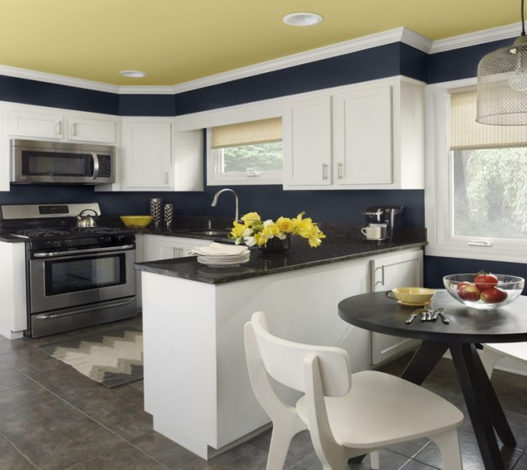 Adorable Benjamin Moore Kitchen Colors Of Ceiling Paint, Interior Paint Blue