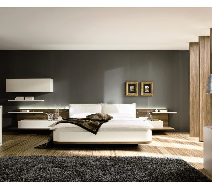 Amazing Contemporary Bedroom Ideas Of Gallery Of With Grey Furry Rug