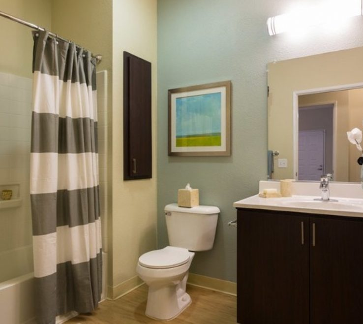 Apartment Bathroom Of Amazing Idea For Decorating Small In Makeover