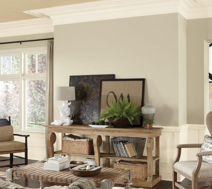 Attractive Living Room Paint Ideas 2017 Of Color Inspiration Gallery Sherwin Williams Rh Sherwin
