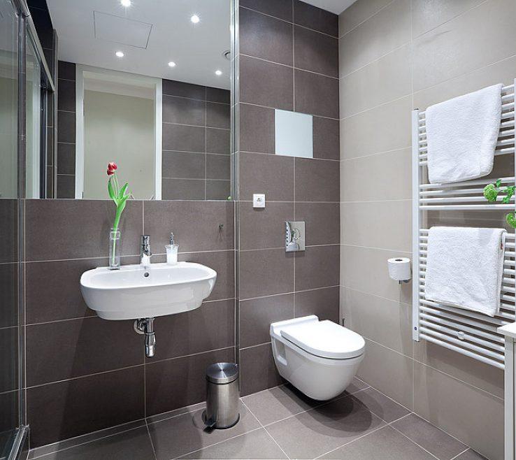 Brilliant Apartment Bathroom Of Detail;