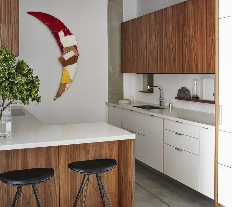 Endearing Small Apartment Kitchen Ideas