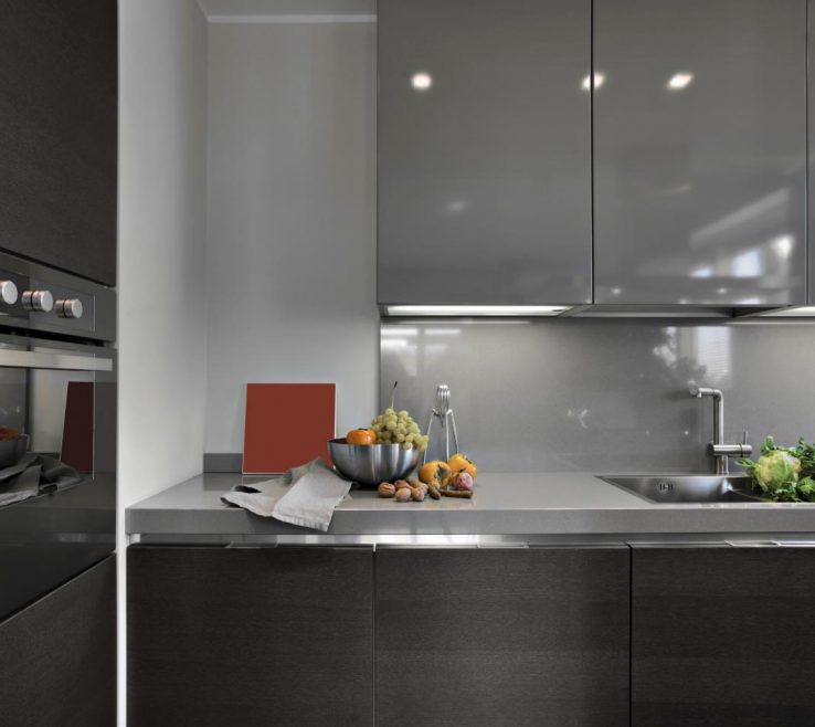 Impressing Pictures Of Modern Kitchens Of Gray Kitchen