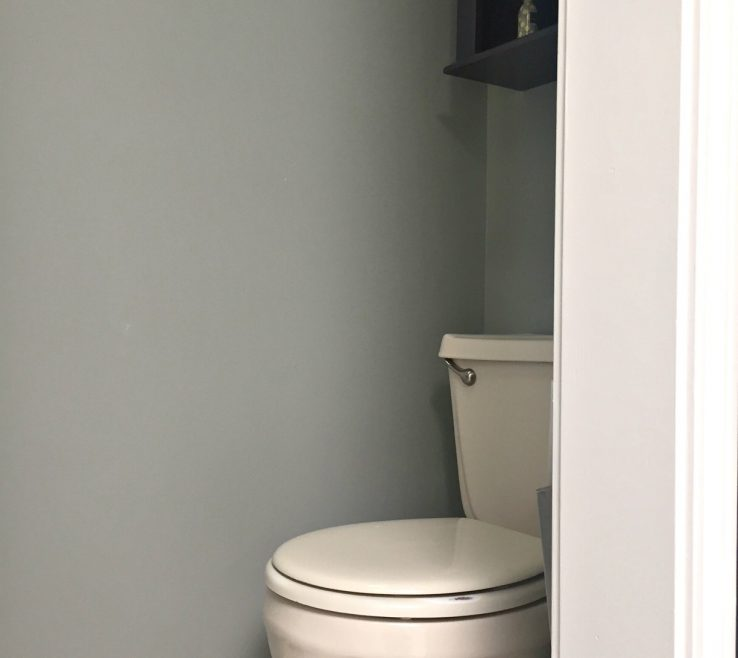 Inspiring Bathroom Paint Colors Of Sherwin Williams Gray Colour With Almond Bone