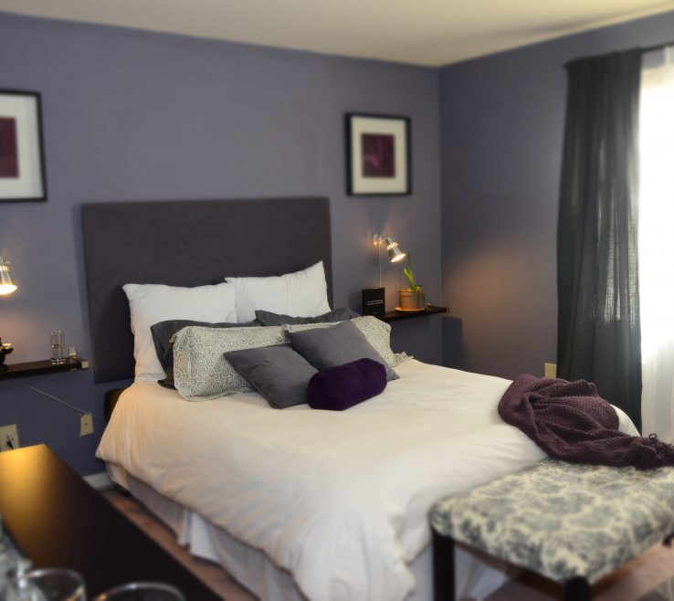 Inspiring Best Gray Paint Colors For Bedroom Of Decorative Withal Color Zebra With Purple Home