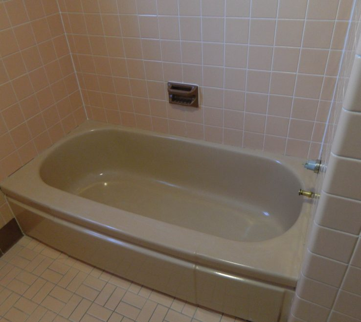Lovely Reglazing Bathroom Tile