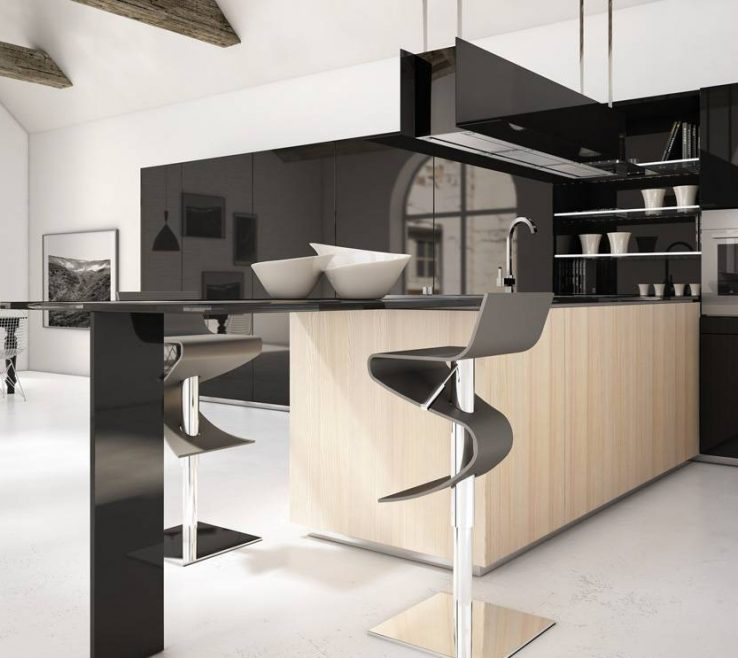 Modern Style Kitchen Of Slicked Black