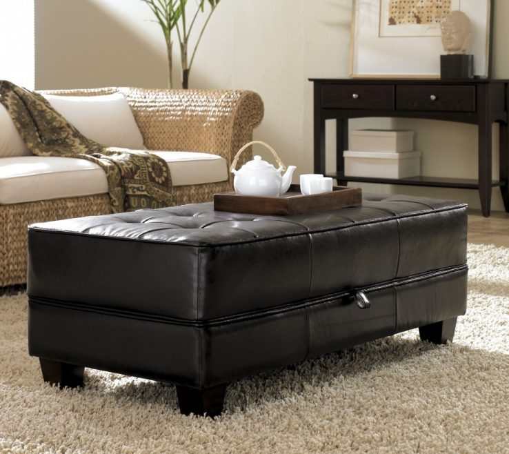 Terrific Ottoman Ideas For Living Room Of Storage Plan