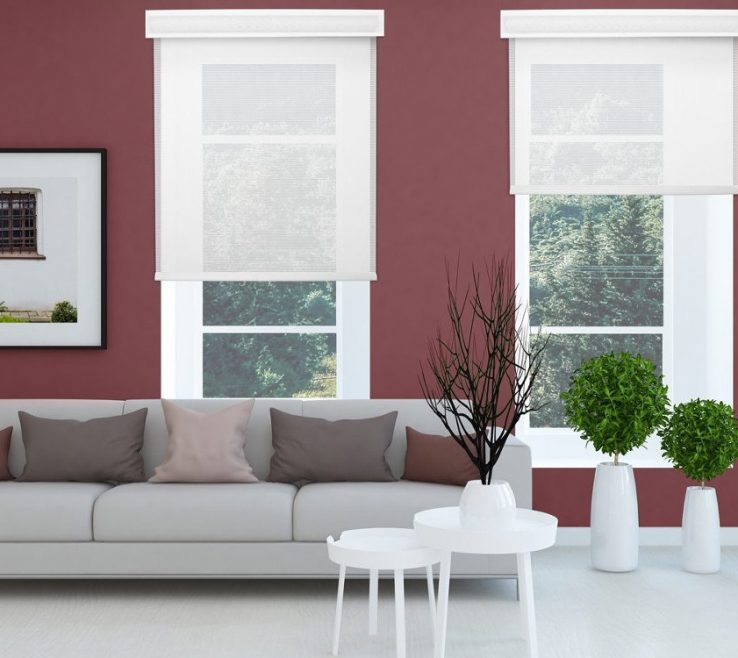 Vanity Best Living Room Of Window Blinds For Your Room. White Roman Style