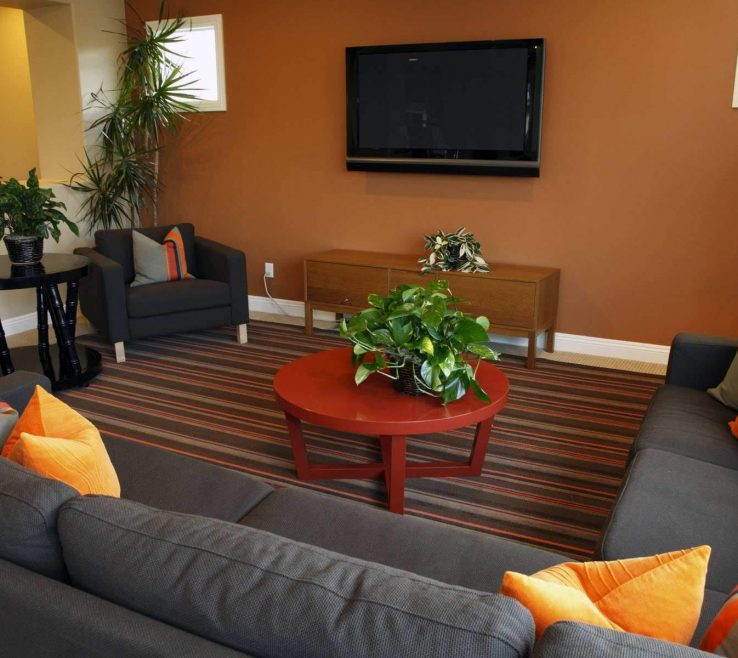 Awesome Burnt Orange And Brown Living Room Ideas Of Good
