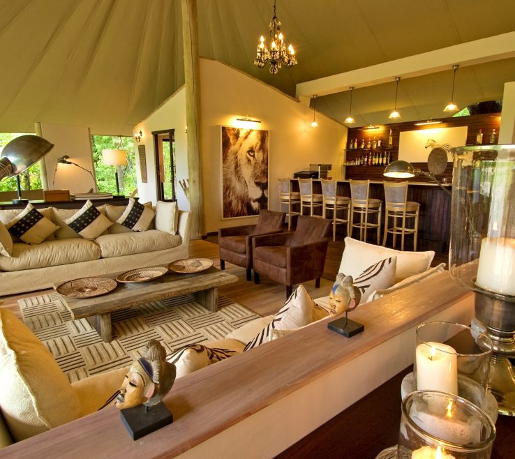 Captivating Safari Themed Living Room Of Decoration Ideas Unique 22 Elegantn Ideas Lovely