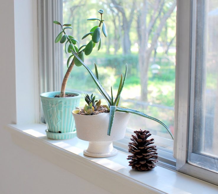 Charming Window Sill Ideas Of Feeding The Soil: Montessori Bedroom For A
