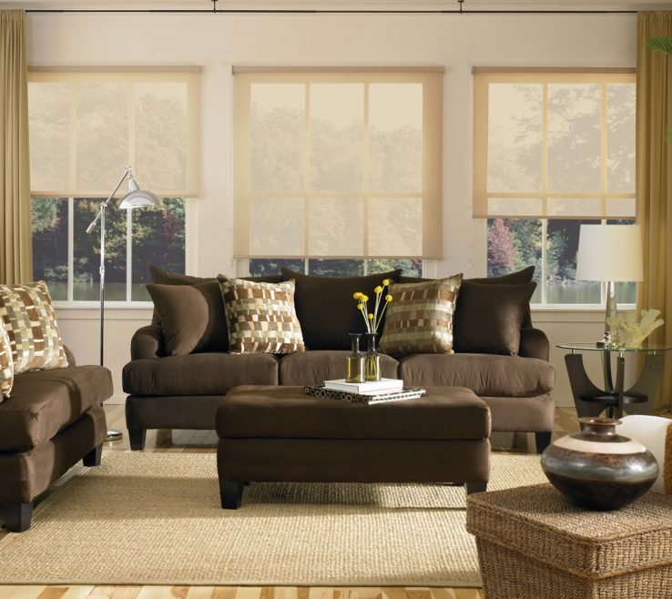 Elegant Brown Decor Of Couch Living Room Ideas And Pillow