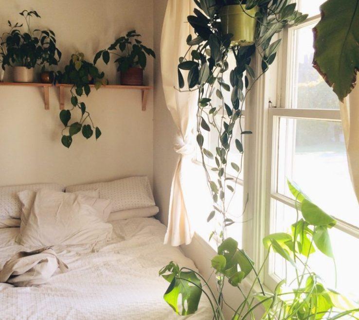 Enchanting Bedroom Flower Arrangements Of 13 Tips And Tricks On How