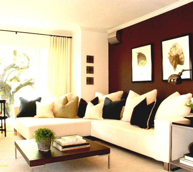 Enthralling Contemporary Interior Paint Colors Of Superbealing For Living Room Unique
