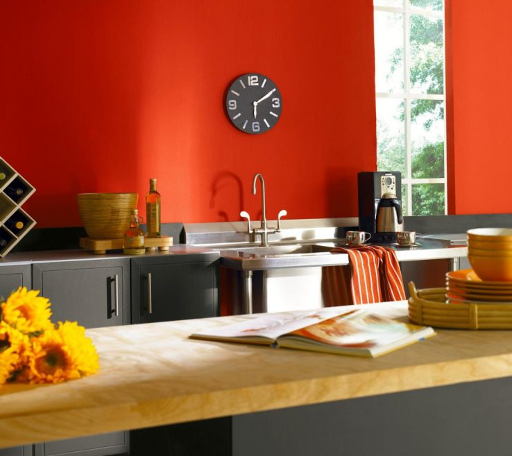 Entrancing Contemporary Interior Paint Colors Of Modern Kitchen