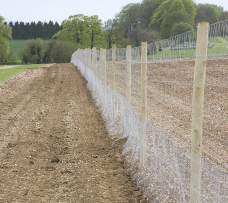 Likeable Attractive Fences