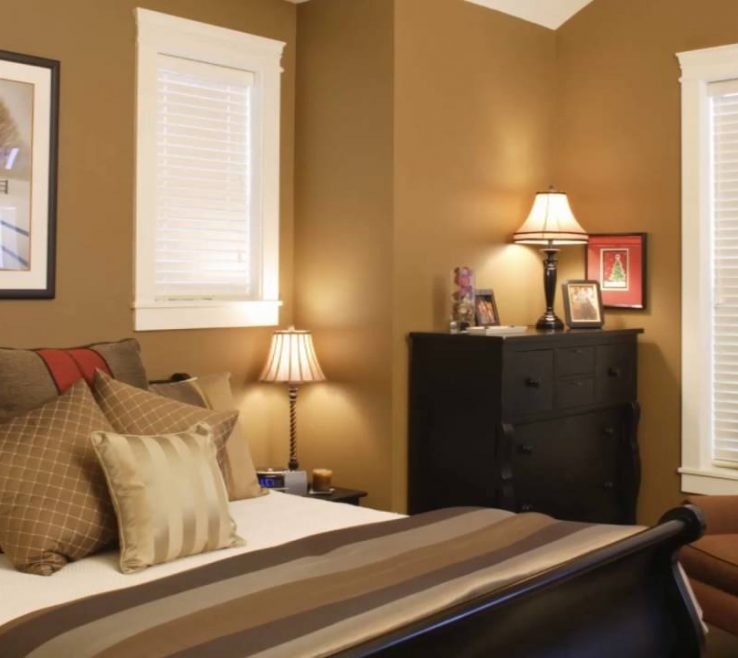 Magnificent Contemporary Interior Paint Colors Of Design Ideas With Dark Brown Color Schemes