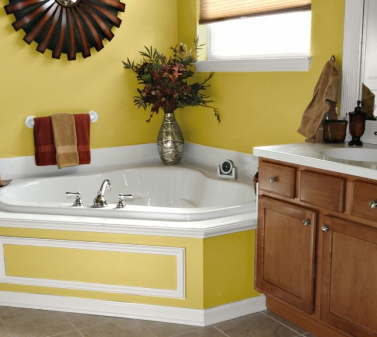 Remarkable Yellow Bathrooms Of Bathroom Accessories
