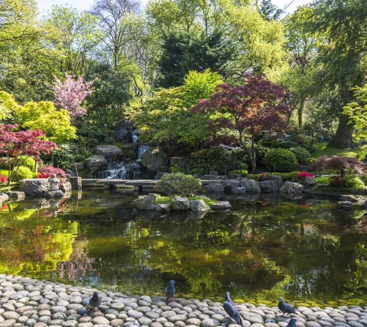 Sophisticated Japanese Garden Ideas Of Kyoto Garden, Holland Park