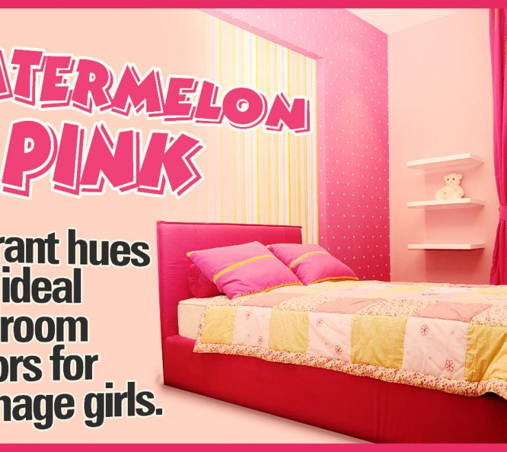 Adorable Paint Colors For Teenage Girl Room