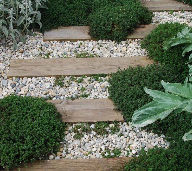 Artistic Wood Garden Path Of Rustic And Stone Accented With Thyme