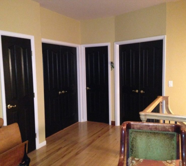 Attractive Black Interior Doors Of Offices With And Trim
