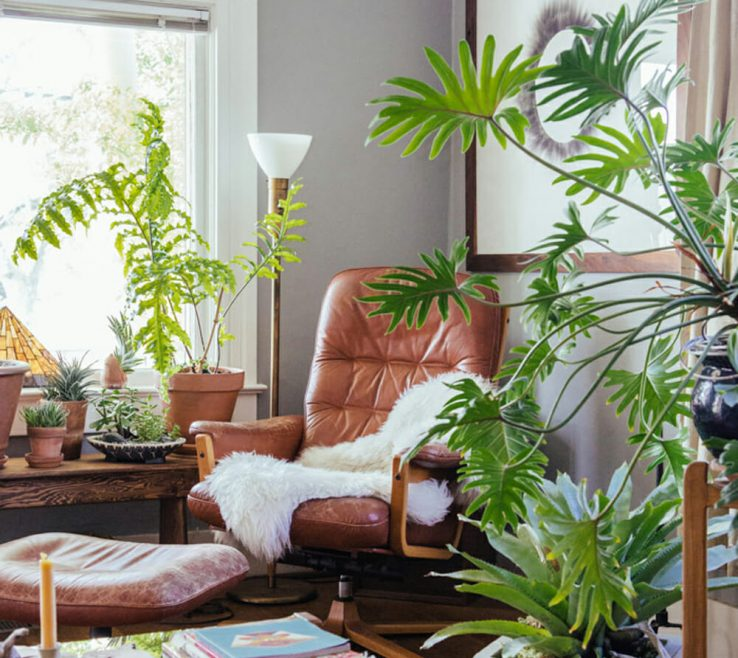 Awesome Decorating With Green Of Plants 11
