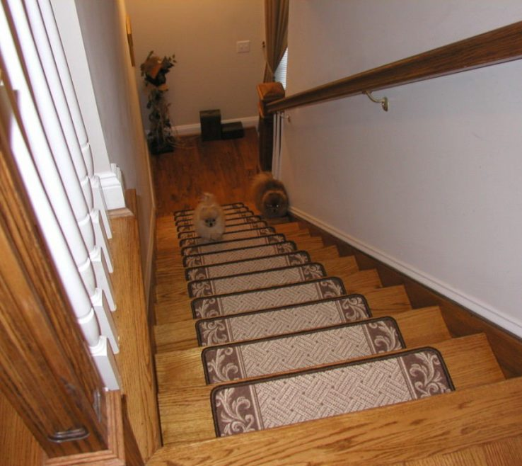 Captivating Cheap Stair Tread Ideas Of Hardwood Floor Stairs Treads Carpet Latest