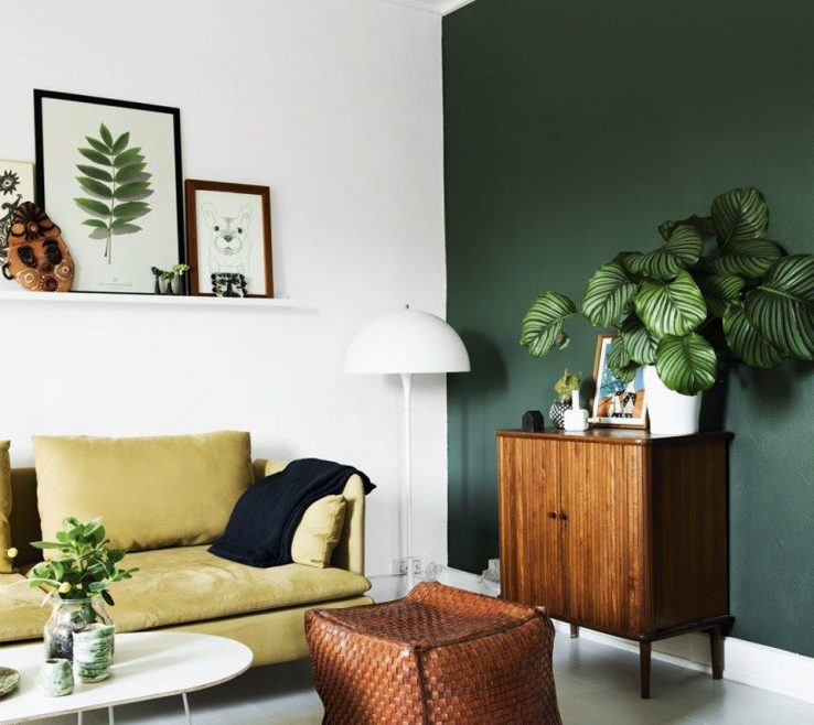 Enchanting Decorating With Green Of One Accent Wall Hunter