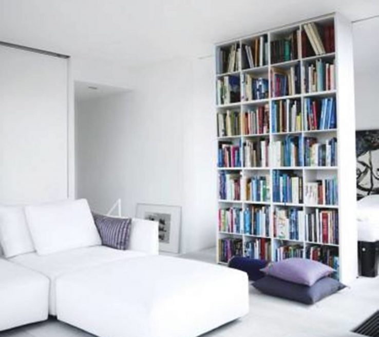 Extraordinary Room Dividers Of Most Seen Images Featured In Astounding Bookcase