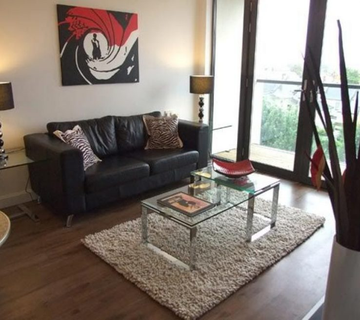 Inexpensive Living Room Decorating Ideas Of Apartment Apartment On A Budget Photo