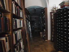 Bookshelves Library Style