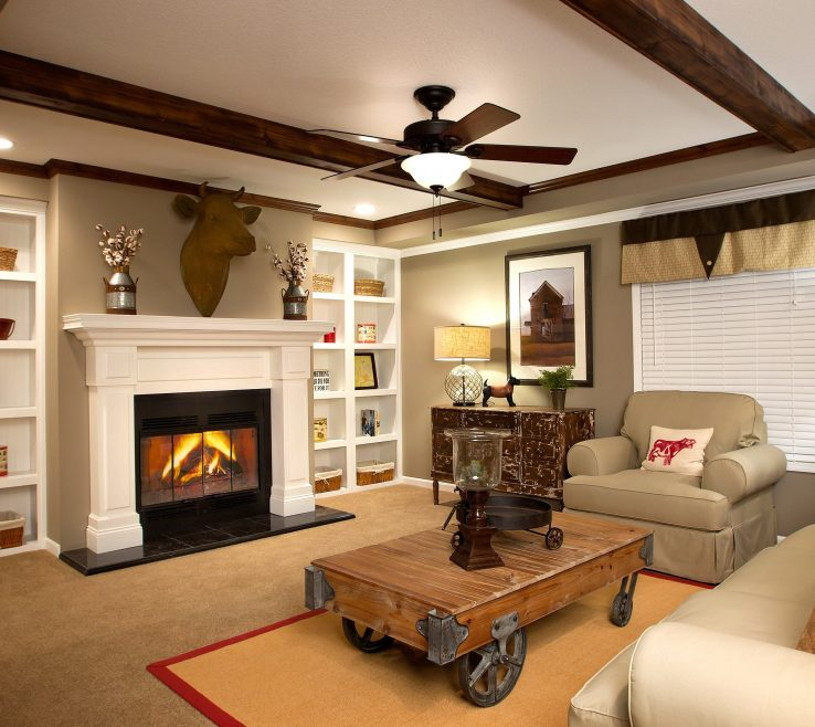 Inspiring E Fireplace Designs 4 Manufactured Home By Clayton