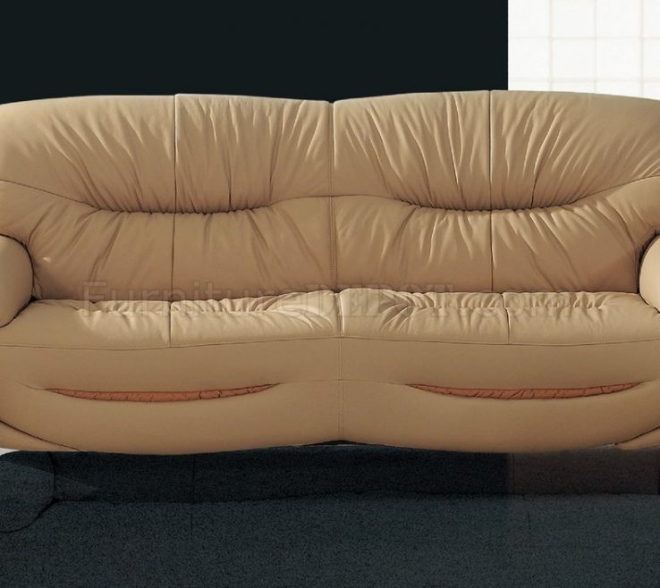Lovely Curved Modern Sofa