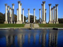 Structural Pillars