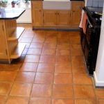 Picturesque Red Brick Kitchen Wall Tiles Of Fire Bricks Flooring For Es Design