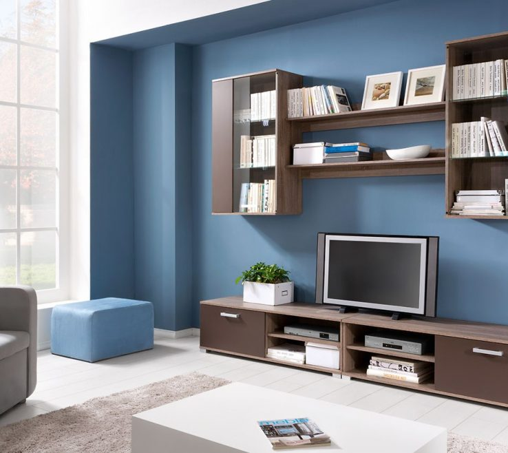 Wall Units Designs For Living Room Of Eye Catching Gallery Of Full Size