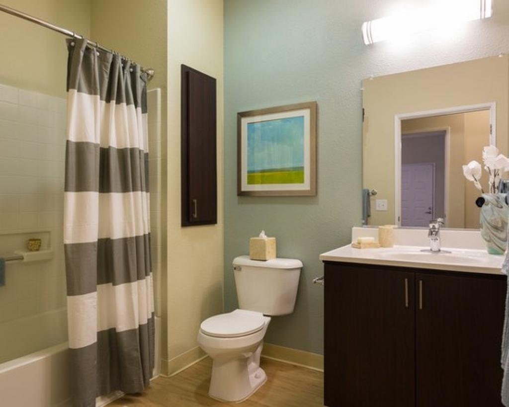 Apartment Bathroom Ideas Of Amazing