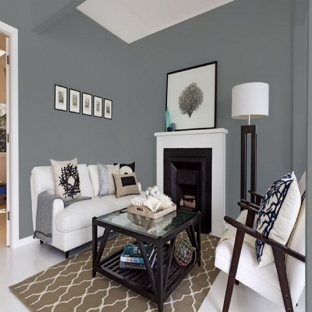 Astounding Grey Paint Ideas For Living Room Of Why