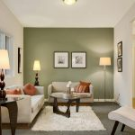 Awesome Accent Wall Living Room Of Image Of Ideas For Small