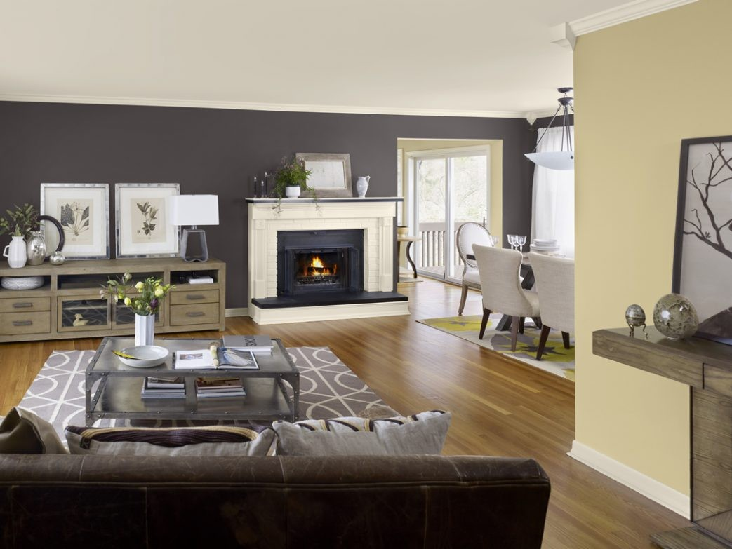 Cool Accent Wall Colors Living Room Of Paint Ideas For Brown Furniture With Colours Acnn Decor
