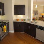 Elegant Apartment Kitchen Of Gourmet Apartment Kitchen