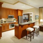Entrancing Apartment Kitchen Of Decorating Ideas Best Pictures