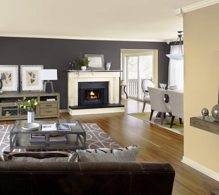 Mesmerizing Living Room Color Ideas Of Select Smart Schemes For Pennypackpark Best Bination