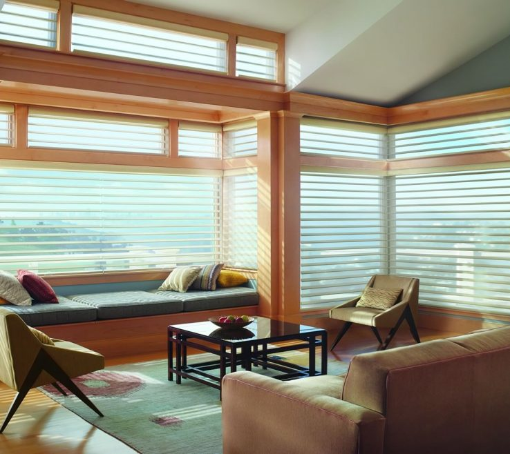 Brilliant Silhouette Blinds
