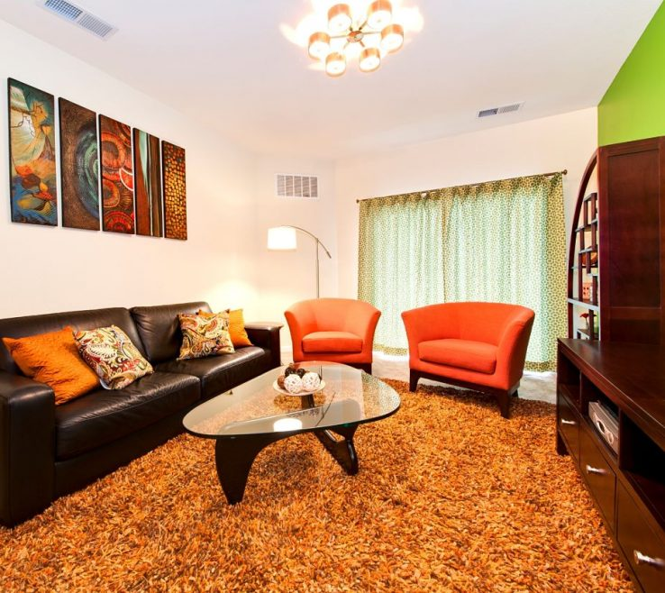 Eye Catching Burnt Orange And Brown Living Room Acnn Decor