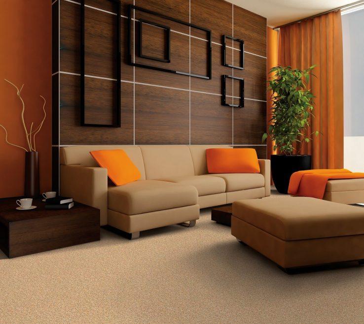Impressive Burnt Orange And Brown Living Room Decor Of ...
