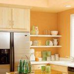 Kitchens Painted Orange Of Kitchen Vibrant Walls Light Paint Ideas Painting
