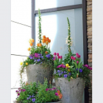 Magnificent Flower Arrangements For Front Door Of Decor Porch Colorful Garden Garden Pots Tulips